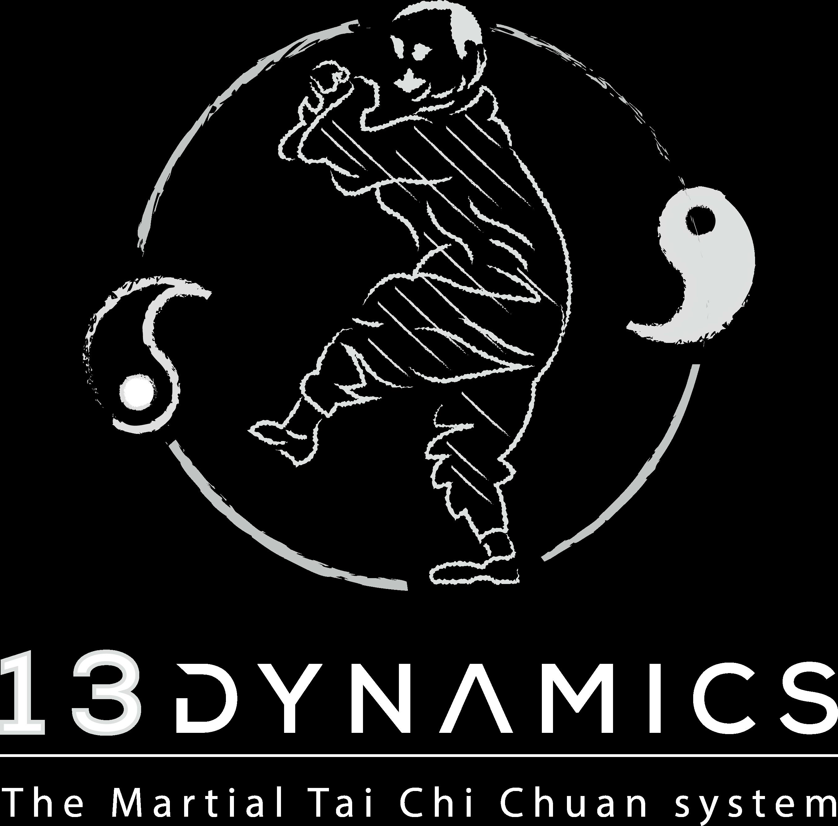 13 Dynamics